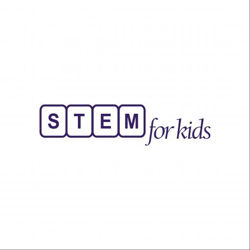 Logo nhượng quyền Stem For Kids